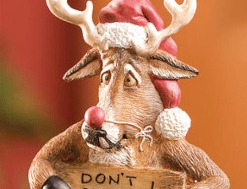 I ønskes alle en Glædelig Jul og på gensyn til vores Julejagt den 28.12