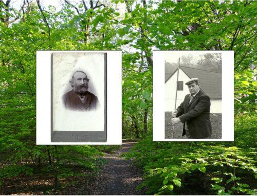 Historien om Egeskoven – Børges skov kan nu ses og læses via linket.